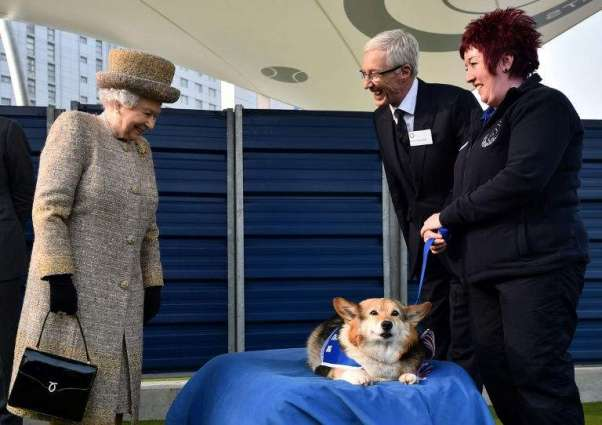Move Over Corgis, Meghan Markles Beagle Joins The British