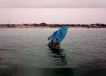 بدعم من التحالف العربي ..أسواق الأسماك في الساحل الغربي لليمن تستعيد نشاطها بعد أن عطلها الحوثيون