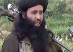 پاکستانی طالبان دے سربراہ ملا فضل اللہ ڈرون حملے وچ ہلاک