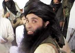Afghanistan confirms Mullah Fazlullah's killing in US strike