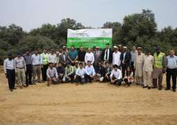 Karachi Conservation launches Million Mangrove Plantation Drive at Port Qasim Authority