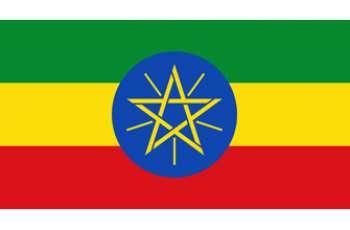 ريك مشار يلتقي غدا سلفا كير في أديس أبابا في محاولة لتقليص الخلافات