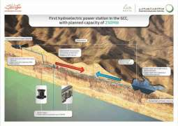 DEWA completes Hatta Hydroelectric Plant engineering studies