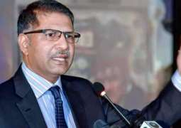 Elections to be held on time despite terrorist attacks: Syed Ali Zafar