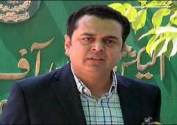 PTI candidate beats PMLN's Talal Chaudhry in NA-102 Faisalabad