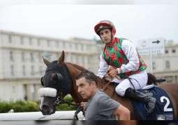 """"""" عون """" لمنصور بن زايد يتوج بكأس رئيس الدولة للخيول العربية في بلجيكا"""