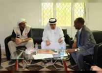 UAE humanitarian role in Yemen commended by Intern'l relief organisations