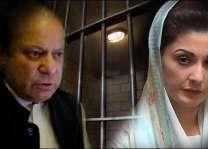 Court reserves verdict on Nawaz, Maryam's plea