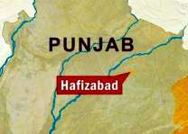 Two brothers shot dead in Hafizabad