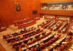 Senate body seeks Lakhra power plant rehabilitation report