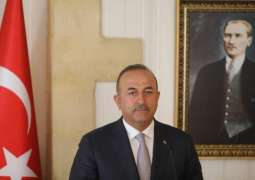 Cavusoglu Calls For Clear Separation of Radical Terrorists From Civilians in Syria's Idlib