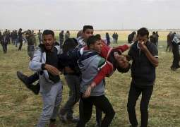 At Least 30 Palestinians Injured by Israeli Forces in Gaza - Reports