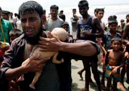 Trump, Pompeo Must Do More To End Ethnic Cleansing of Rohingyas in Myanmar - 17 Senators