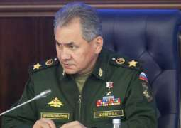 Russia to Share Terrorism Fight Experience With Egypt - Defense Minister