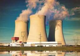 S.Africa State Nuclear Corporation to Submit Amendments to Gov't Energy Plan - Spokeswoman