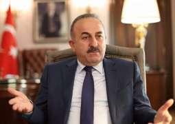 Ankara, Amsterdam Agree to Appoint Ambassadors in Wake of Diplomatic Crisis - Cavusoglu