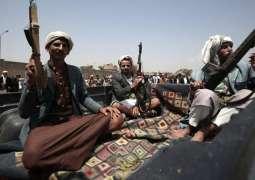 Russia Coordinates Efforts on Yemeni Settlement With Saudi Arabia, US - Ambassador