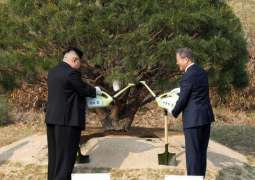 South Korean President Plants Tree in Pyongyang to Commemorate Visit
