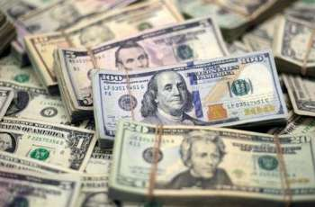 Ankara Says Wants to Use National Currencies Instead of US Dollar in Trade With Venezuela