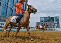 China backtracks on horse racing, gambling for island province