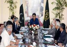 Economic Coordination Committee again defers proposal of power tariff rationalization