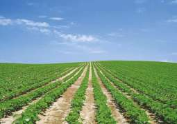 Prime Minister urged to constitute BOD ZTBL for revamping agriculture strength