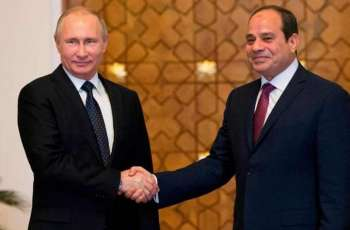 Egyptian President Hopes for Rapid Construction of Dabaa NPP, Russian Industrial Zone