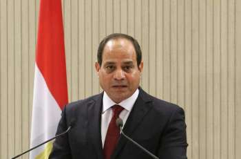 Egypt Ex-Assistant Foreign Minister Says Russia Firmly Supports Development Plans of Cairo