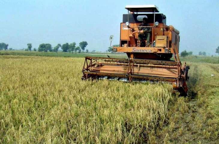 Agriculture deptt seeks applications for pesticide licences