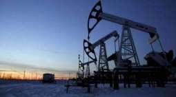 Kuwait oil price down to US$81.07 pb