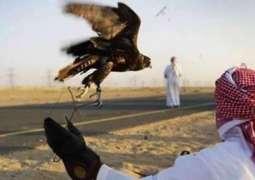 قطری شہزادے تلور دے شکار لئی ماہنی تھل اپڑ گئے،کساناں دا احتجاج