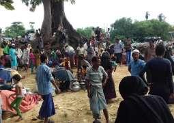 روہنگیا دے مسلماناں داقتل عام بند کیتا ونجا ، برما دی فوج انسانیت دے خلاف جرائم کیتے ہن، چئیرمین ہالوکاسٹ میوزیم