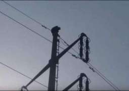 Man in Karachi climbs up electricity pole with absurd demands