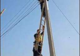 Rescue 1122 workers save bird stuck in electricity wires