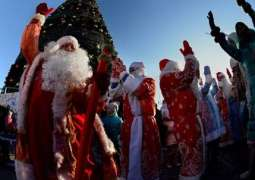 Russia's Ded Moroz to Meet Finnish Counterpart on December 20 - Press Service