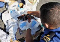 Dubai Customs prevents 355 drug smuggling attempts