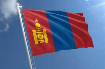 Mongolia's industrial output rises 19.5 pct in first 11 months