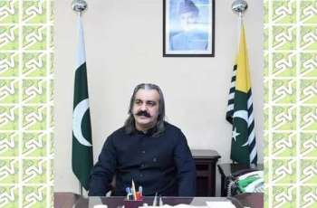 Ali Amin Khan Gandapur assures  including AJK team in PSL
