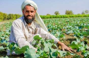 Agriculture experts says increase of agriculture production must be in proportionate to population