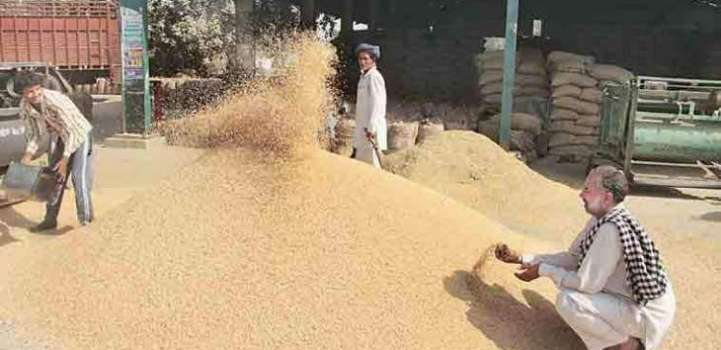 Enough stock of wheat available in GB: Ikramullah