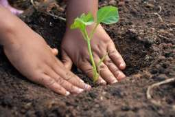 Eco-friendly environment for business strengthens entrepreneurs