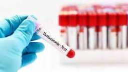 Grooms required undergoing Thalassemia test before marriage