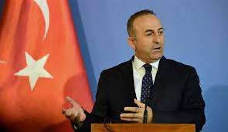 ترک وزیر خارجہ دی فرانس اچ مظاہرین تے طاقت دے استعمال دی مذمت