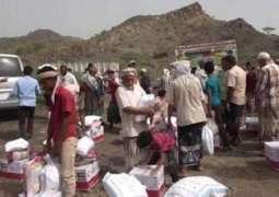 UAE dispatches 25 tonnes of medicines to Yemen's Red Sea coast