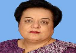 Govt committed to ensure basic rights of citizens: Dr Shireen M Mazari