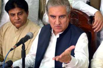 Some elements creating hurdles in creation of South Punjab province: Makhdoom Shah Mehmood Qureshi