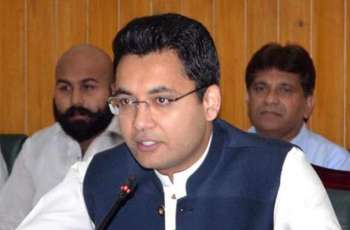 PTI govt determined to achieve set targets: Farukkh Habib