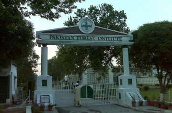 PFI holds farewell in honour of retired employees