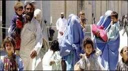 وزارت ریاستیں تے سرحدی امور 8 لکھ 89 ہزار مہاجراں کوں رجسٹرڈ کرگھدے، ڈائریکٹر چیف کمشنر آفس افغان مہاجرین