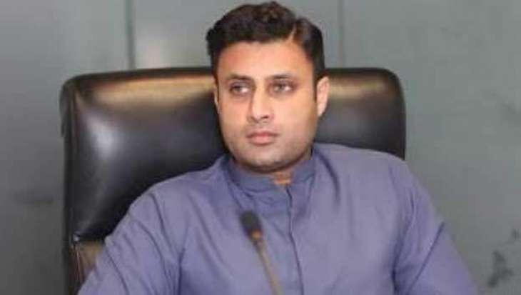 New Year To Herald Maximum Initiatives For Pakistani Expats: Zulfi